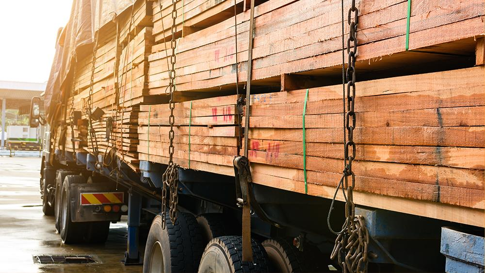TTF launches free Due Diligence Toolkit for importing and exporting timber image