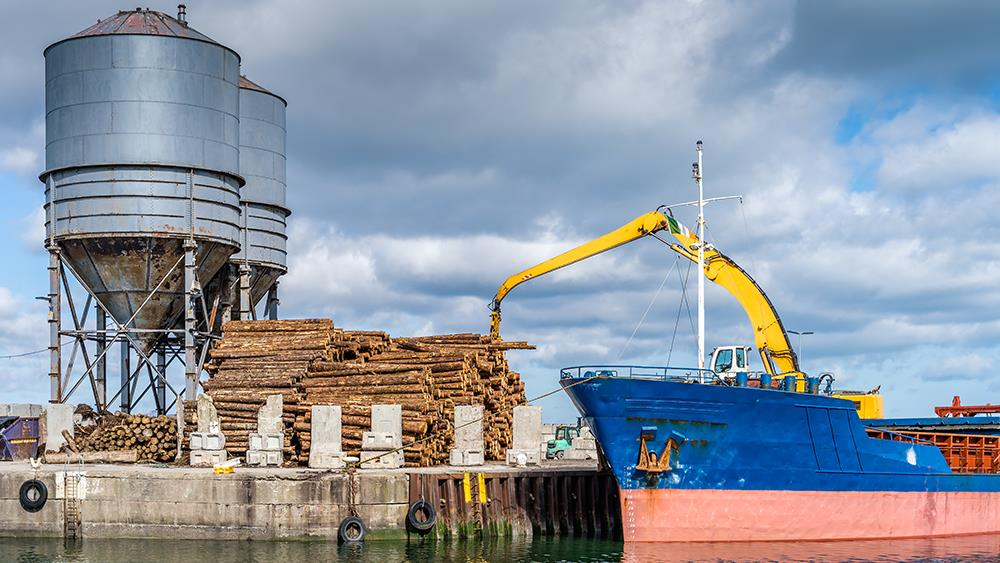 Timber imports continue strong market recovery image